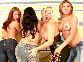 Alluring natural tits shemale refined with superb blowjob