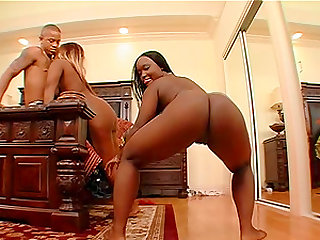 Chubby babes Hershey Pipes and Queen B enjoy a swollen boner